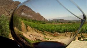 tasting wines argentina